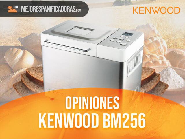 Opiniones-kenwood-bm256