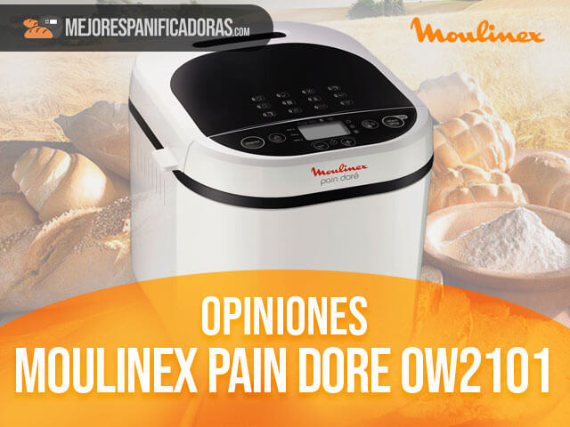 Opiniones-moulinex-pain-dore-ow2101