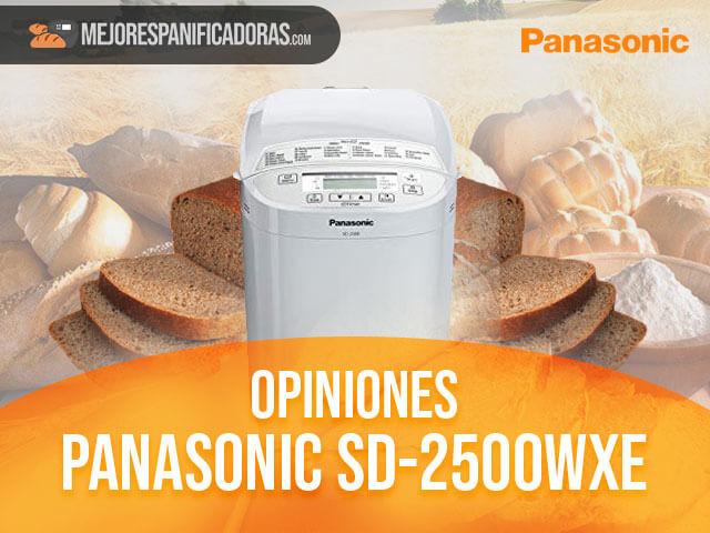 Opiniones-panasonic-sd-2500wxe