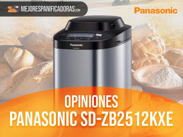 Opiniones-panasonic-sd-zb2512kxe