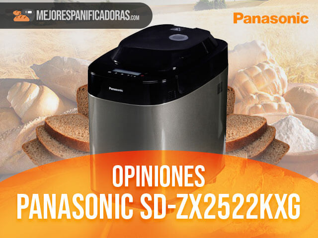 Opiniones-panasonic-sd-zx2522kxg
