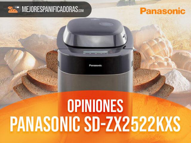 Opiniones-panasonic-sd-zx2522kxs